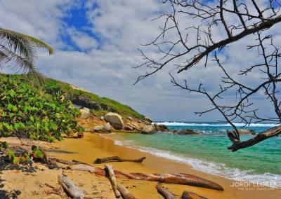 Playa, Tayrona