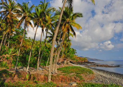 La Costa de Grande Comore
