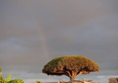 Arco Iris, Wadi Derhur