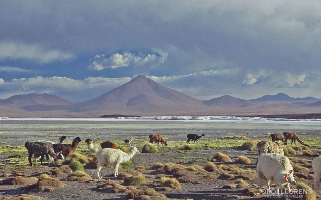 Bolívia, les llacunes i el Desert de Sal