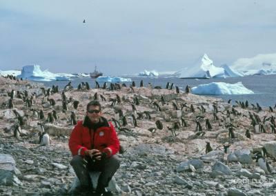 Con los pingüinos Papua, Cuverville