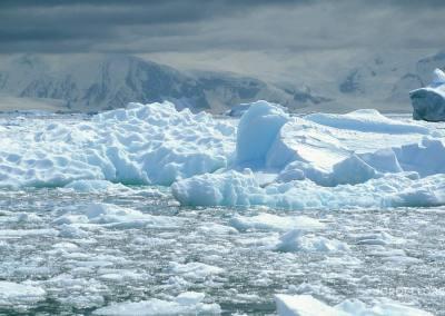 Trozos de hielo en la bahía Neko