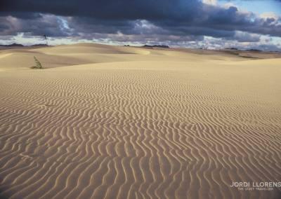 Desierto de Boavista