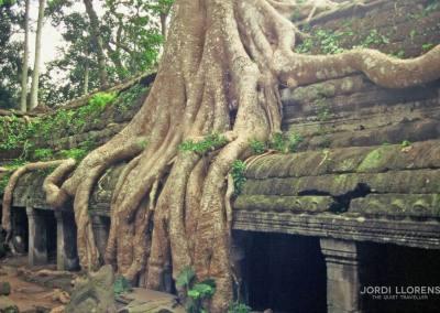 Un templo de Angkor