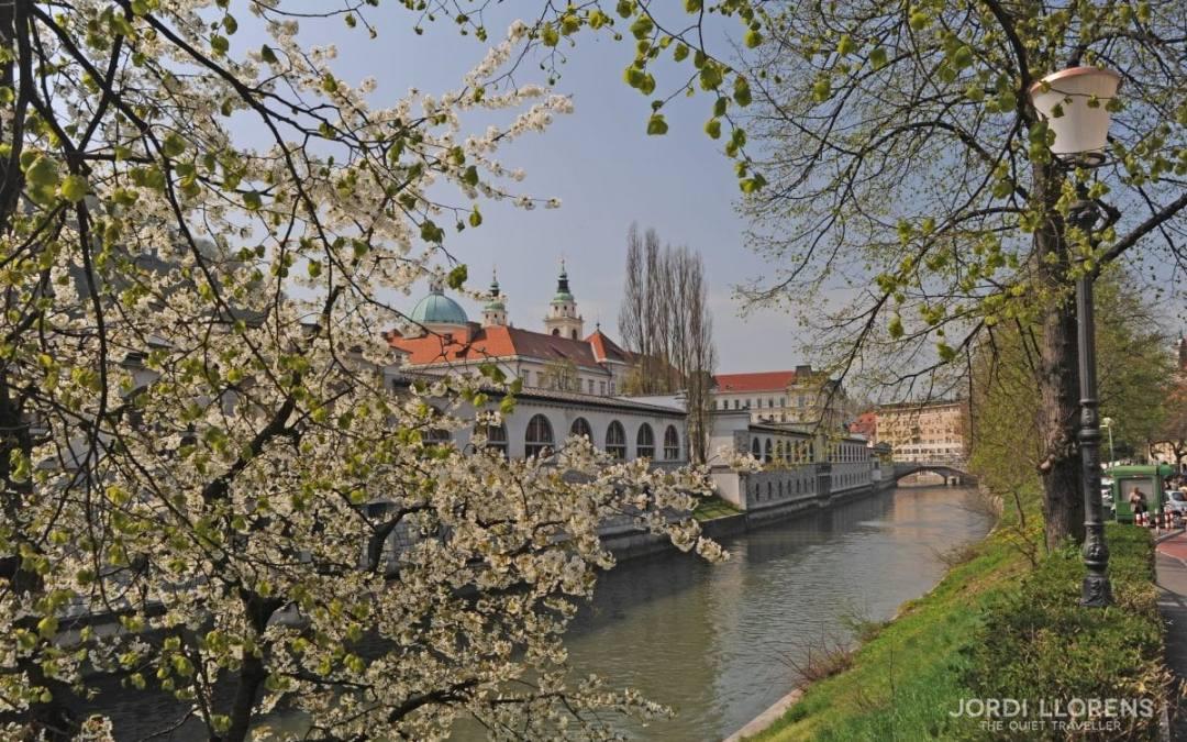 Eslovenia, una sorpresa