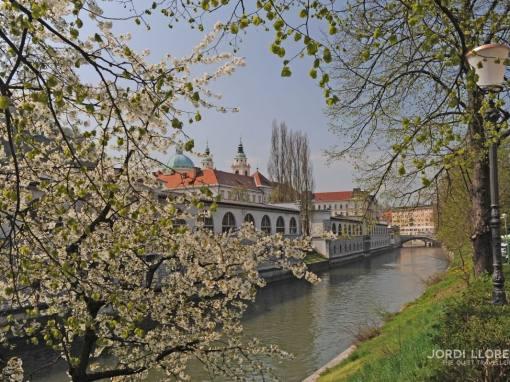 Eslovènia, una sorpresa