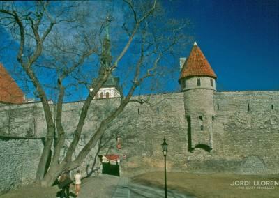 Las murallas, Tallin