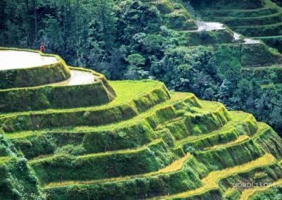 Terrazas de Arroz, Banaue, Luzon