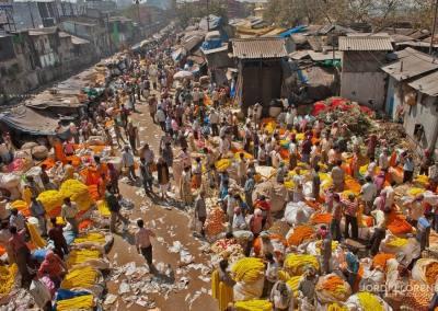 Mallick ghat, Mercado de las flores, Calcuta