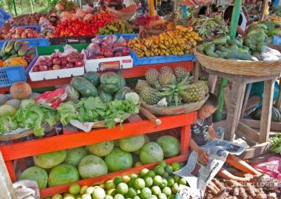 Instruyéndose en el mercado, San Carlos