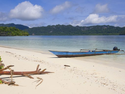 Raja Ampat, the largest marine biodiversity on the planet