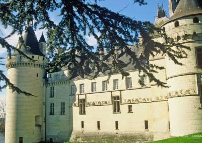 Castillo de Chaumont, Loira