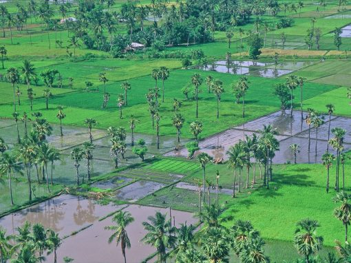Islas Nusa Tenggara